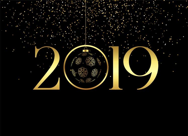 Úspěšný start nového roku 2019